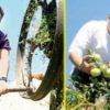 sarabhai-vs-sarabhai-fame-rajesh-kumar-busy-farming-in-bihar