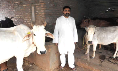 software-engineer-nishant-kushwaha-creating-jobs-with-the-help-of-cow